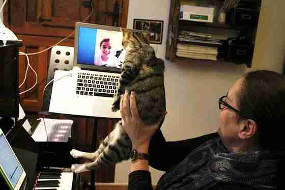 Music Lessons Anywhere piano lessons live online cat