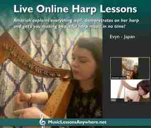 Skype harp lessons online - Music Lessons Anywhere